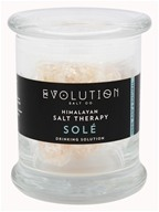 Evolution Salt Company - solution potable unique de thérapie de Sel de l'Himalaya - 12 once.
