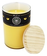 Terra Essential Scents - Seasonal Soy Candle Black Cat - 12 oz.