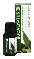 GuruNanda - 100% Pure Essential Oil Eucalyptus - 0.5 oz.