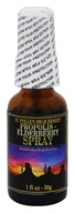CC Pollen - High Desert Propolis Elderberry Spray - 1 oz.