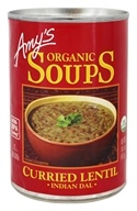 Organic Soup Curried Lentil Indian Dal - 14.5 fl. oz.