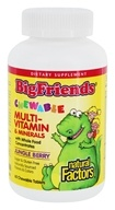 Natural Factors - Big Friends Chewable Multi-Vitamin & Minerals Jungle Berry - 60 Chewable Tablets