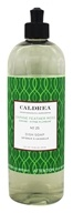 Caldrea - Dish Soap Daphne Feather Moss - 16 oz.
