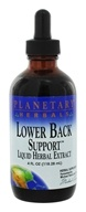 Lower Back Support Liquid Herbal Extract - 4 fl. oz.