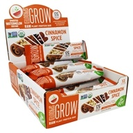 Go Raw - Organic Sprouted Plant Protein Bars Cinnamon Spice - 12 Bars