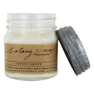 Mason Jar Soy Candle with Zinc Lid Citrus Grove - 8 fl. oz.