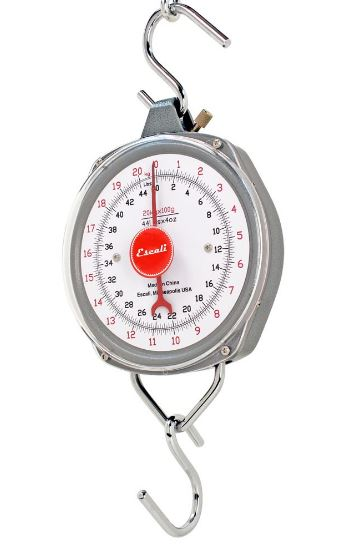H-Series Hanging Scales H220100 220 Lb. x 1 Lb. by Escali