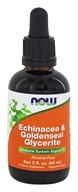 NOW Foods - Echinacea & Goldenseal Glycerite Alcohol-Free - 2 fl. oz.