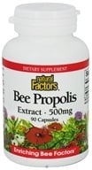 Image of Natural Factors - Bee Propolis Extract 500 mg. - 90 Capsules CLEARANCED PRICED