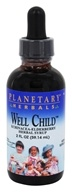 Image of Planetary Herbals - Well Child Echinacea-Elderberry Syrup - 2 oz. Formerly Planetary Formulas