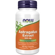NOW Foods - Astragalus Extract 500 mg. - 90 Vegetarian Capsules (733739045980)