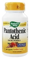 Nature's Way - Pantothenic Acid 250 mg. - 100 Capsules, from category: Vitamins & Minerals