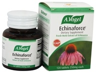 Image of Bioforce USA A.Vogel - Echinaforce Tabs - 120 Tablets