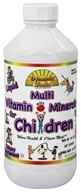 Dynamic Health - Children's Liquid Multi Vitamin & Mineral - 8 oz.