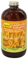 Dynamic Health - Lactobacillus Acidophilus Liquid 10 Billion Live Cells Organic Papaya - 16 oz.