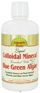 Dynamic Health - Liquid Colloidal Mineral Enriched with Blue-Green Algae Lemon-Lime - 32 oz.