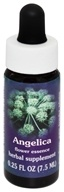 Image of Flower Essence Services - Angelica Flower Essence - 0.25 oz.
