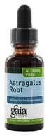Image of Gaia Herbs - Astragalus Root Alcohol Free - 1 oz. Formerly Chinese Astragalus Alcohol Free