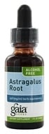 Gaia Herbs - Astragalus Root Alcohol Free - 1 oz. Formerly Chinese Astragalus Alcohol Free by Gaia Herbs
