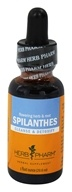 Herb Pharm - Spilanthes Extract - 1 oz.