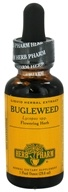 Herb Pharm - Bugleweed Extract - 1 oz.