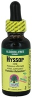 Nature's Answer - Hyssop Herbs Alcohol Free - 1 oz.