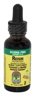 Nature's Answer - Reishi Fruiting Body Alcohol Free - 1 oz. - $12.20