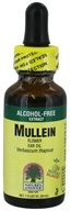 Nature's Answer - Mullein Flower Ear Oil Alcohol Free - 1 oz.