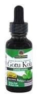 Nature's Answer - Gotu Kola Herb Alcohol Free - 1 oz.