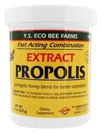 Image of YS Organic Bee Farms - Propolis In Honey 110000 mg. - 11.4 oz.