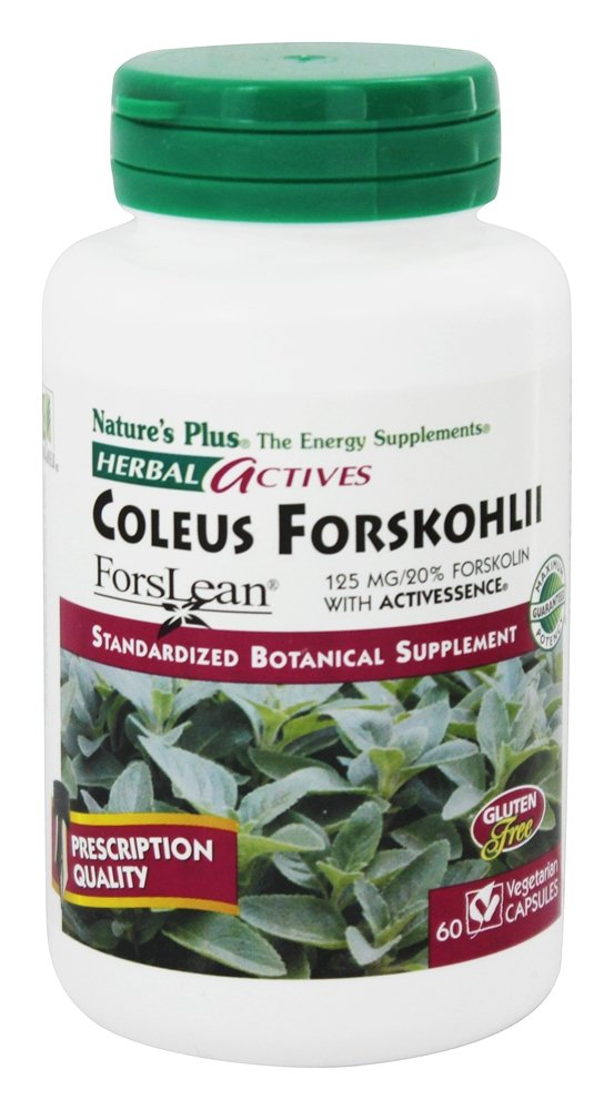 Nature's Plus - Herbal Actives Coleus Forskohlii Forskolin 125 mg. - 60 Vegetarian Capsules