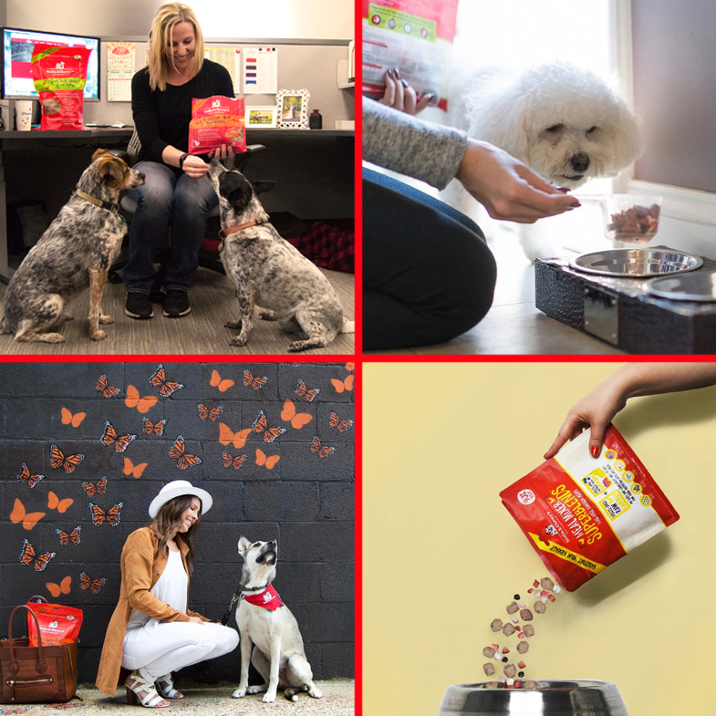 stella-chewys-natural-dog-food-lifestyle